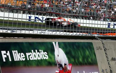 F1 like rabbits Ф1 любит кроликов реклама