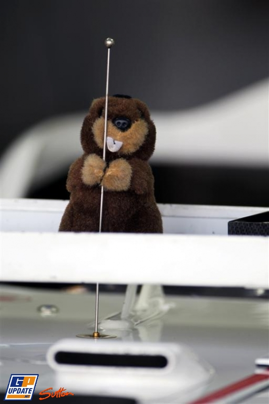 бобер на болиде Sauber на Гран-при Бразилии 2010
