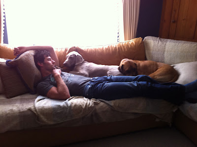 Марк Уэббер со своими собаками лежит на диване