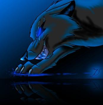 spiritcat2