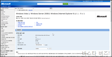 ie8rc1_1