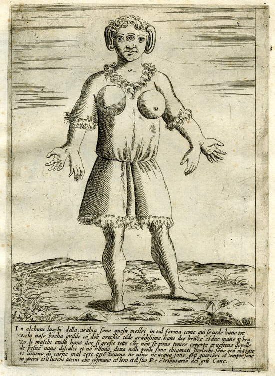 A Female Figure with Large Breasts, Three Eyes, Deformed Ears and Four Hands Standing in a Landscape