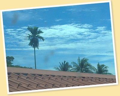 View 하늘
