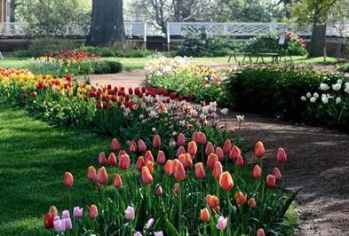 5361_House_Garden_historicGardens_small