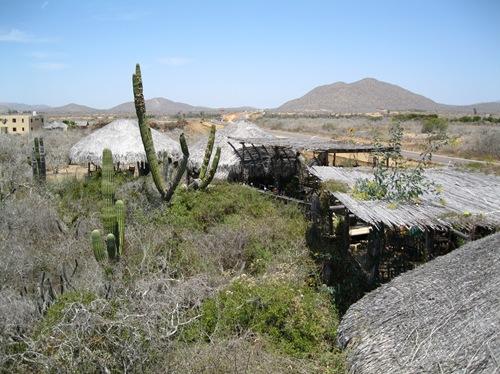 Cabo San Lucas 2 074