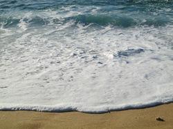 Cabo San Lucas 063