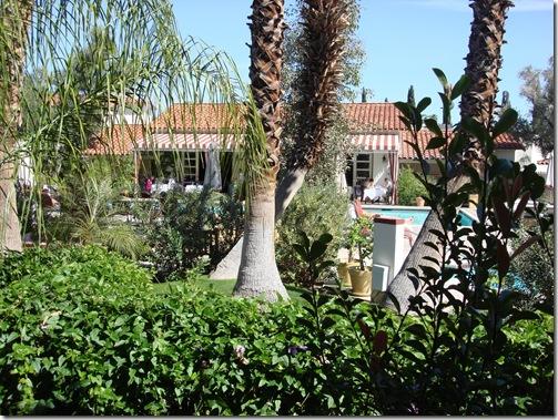 Palm Springs 3 059