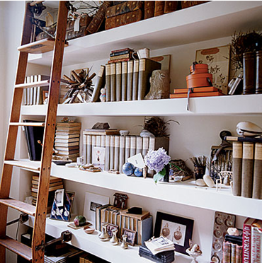 Bookshelves with Library Ladders 