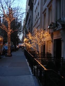 NYC Dec 248