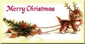 navidad varios