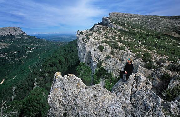 Cingles del Portell de Llaberia, serra de Llaberia, al fons a l'esquerra la mola de Colldejou,Tivissa, Ribera d'Ebre, Tarragona