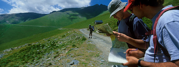 Pastures a la vall d'Assua,Sort, Pallars Sobirà, Lleida2002.09