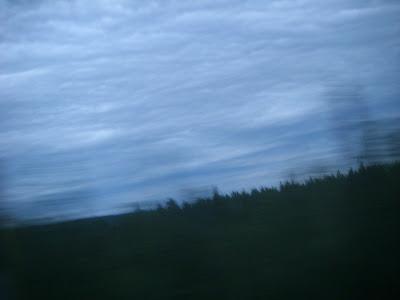湿地と鉛色の雲