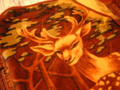 鹿柄の毛布
