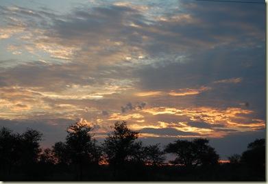 Kruger Park 544