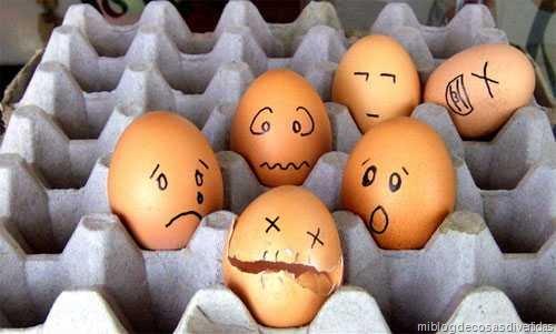 huevos miblogdecosasdivertidas (9)