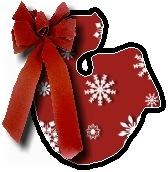 Christmas blanket G