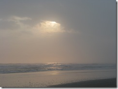 5223 Early Morning Sea Shell Hunting South Padre Island Texas