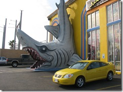 5480 Jaws Souvenir Shop South Padre Island Texas