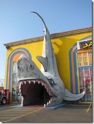 5482 Jaws Souvenir Shop South Padre Island Texas