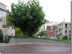 3461 Lombard Street San Francisco CA