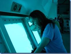 7815 Semi Sub Coral World Charlotte Amalie St Thomas USVI