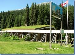 0487 Rogers Pass Glacier National Park BC