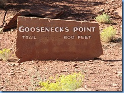 4557 Goosenecks Point Capitol Reef National Park UT