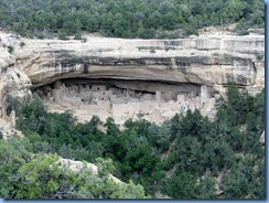 5922 Mesa Verde National Park Cliff Palace View Camera Point CO