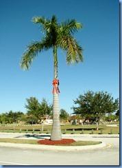 7012 Cutler Bay  FL walk