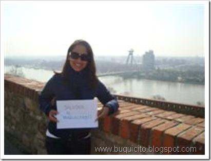 El_Danubio_desde_Eslovaquia_(WinCE)