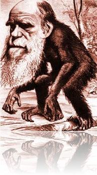 atbash-charles-darwin-ape