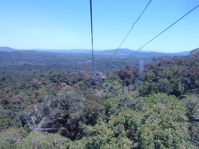 Gliding by cable car over the Tropical Rainforest