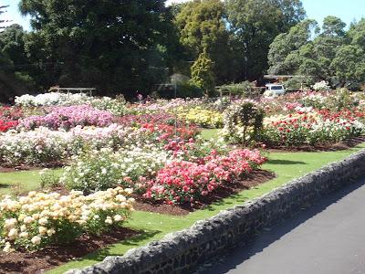 Rose Park Garden