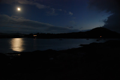 Moonlight on Westcove Harbor