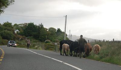 People watching, Co Kerry, Ireland
