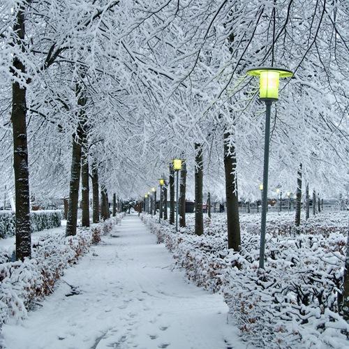 vintergang