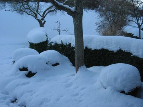 vinter 2010 047