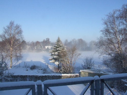 Mosekonen brygger i sneen 002