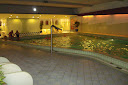 piscina Hotel Holiday Inn Leiden