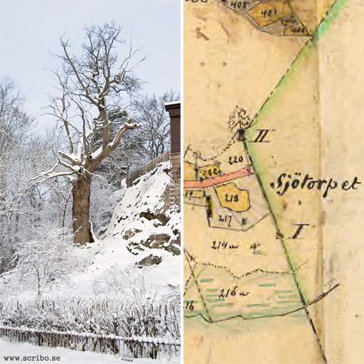 Gränseken vis Vårdsätra naturpark och en karta över omrödet från 1893