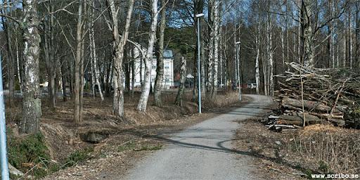 Cyckelväg över Rosendalsfältet, upplag av stockar