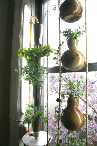 Window Farm (Plastic-Free)