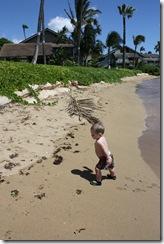 Maui 2010 024