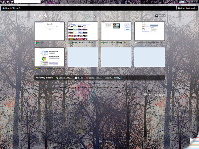ภาพ Browser ใน Chrome OS หลุดบนเน็ต?