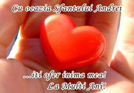 1259431426-felicitari_sf._andrei_9