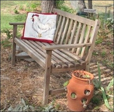 Rooster pillow and free old bench 009