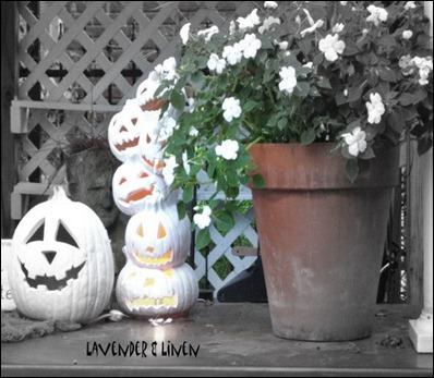 Halloween 2010 195-1