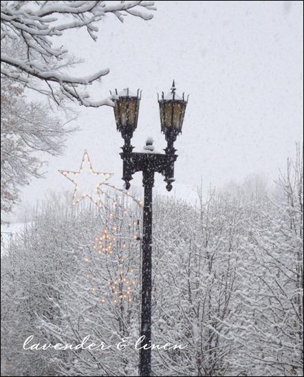 christmas 2010 015-2