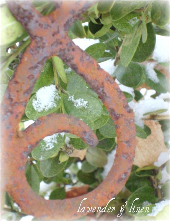Dec. 26, 2010 - snow 019-1